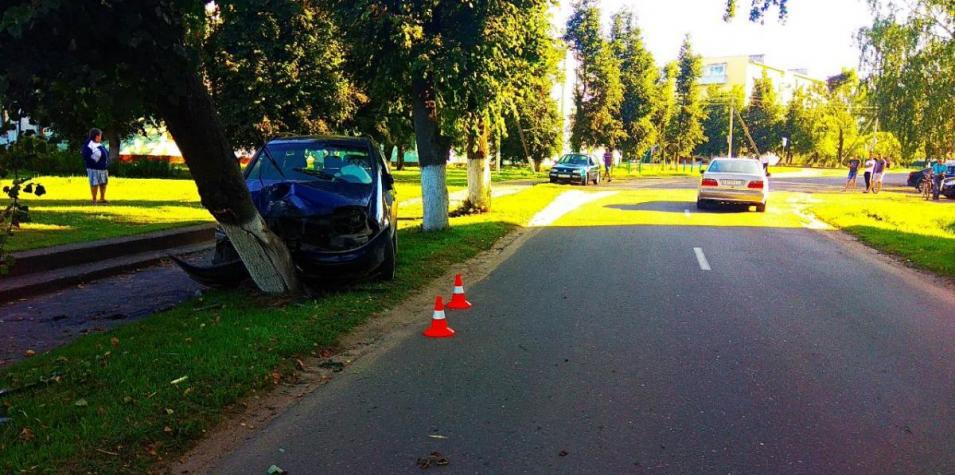 ДТП в Шклове: на пути «Сеата» оказалось дерево