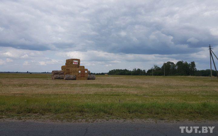 Какие фигуры из соломы к окончанию уборочной компании появились в Беларуси в этом году