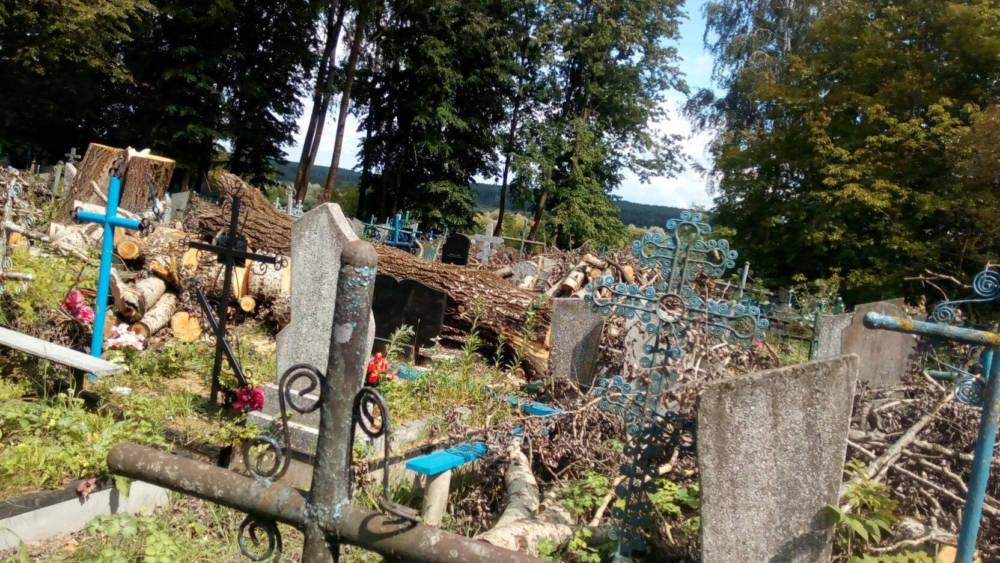 Жители Кричева в ужасе от состояния Вороневского кладбища после работ коммунальников