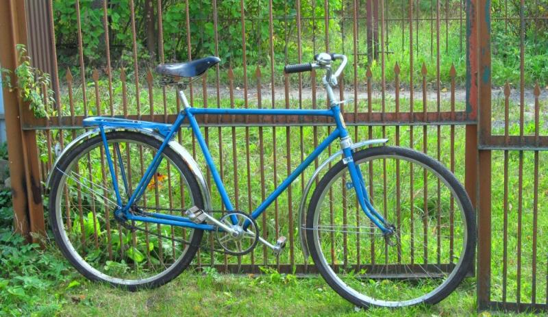Поездка на велосипеде с ребенком и гусем обернулась трагедией