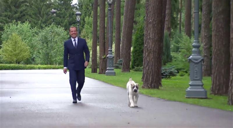 Медведев показал подарок от президента Туркменистана