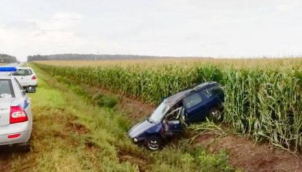 В Кировске мужчина угнал у родственника автомобиль и вылетел в кювет