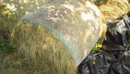 В Костюковичском районе пенсионер обманным путем завладел сеном