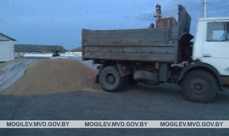 Житель Чериковского района хотел присвоить государственную пшеницу
