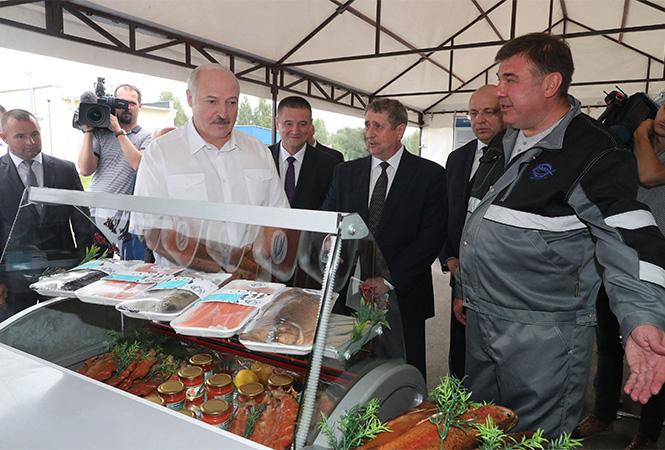 Президент высоко оценил организацию работы на форелевом хозяйстве в Могилевской области