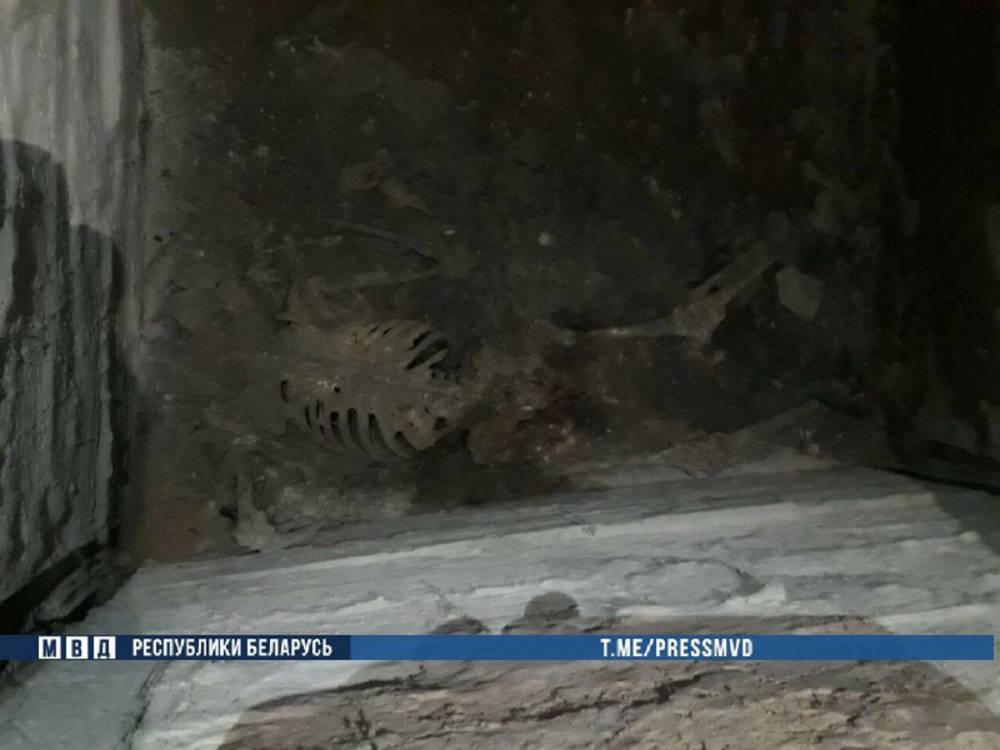 Получили в наследство дом и скелет. Подробности расследования