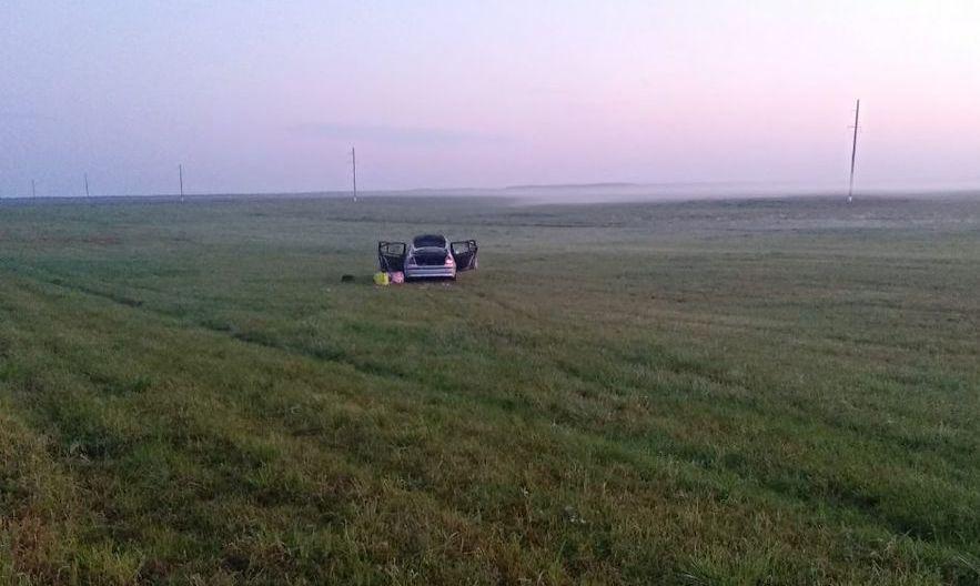 Под Бобруйском произошло двойное ДТП из-за лося