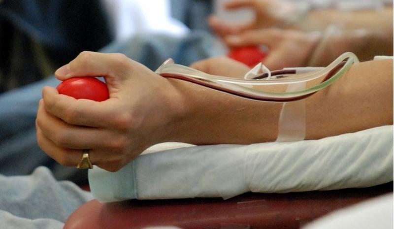 Новая услуга от Могилевской областной станции переливания крови – sms-оповещения донора