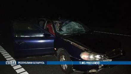 В Осиповичском районе «Ford Mondeo» сбил пешехода