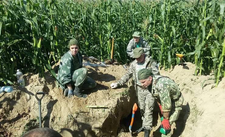 Совместная экспедиция дала свои результаты: в Чаусском районе найдены останки бойцов Красной армии