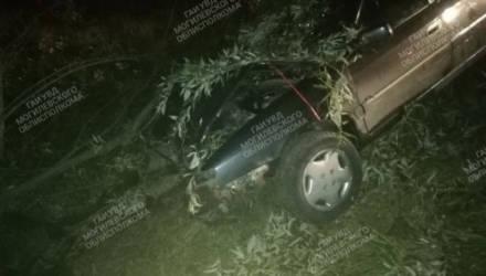 Пьяный бесправник вылетел в кювет и врезался в дерево в Костюковичском районе