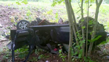 24-летняя женщина погибла ночью в результате ДТП на автодороге Быхов - Белыничи