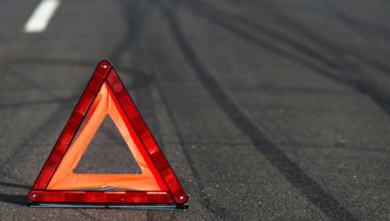 В Быховском районе повозка выехала на встречную полосу и попала под колеса грузовика