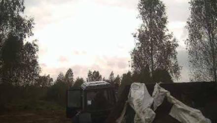 Более 7,6 тысячи рублей может заплатить мужчина за выброс мусора в лесу Могилёвского района
