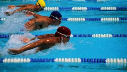 Представители Могилёвщины пробились в финалы на этапе Кубка мира по плаванию