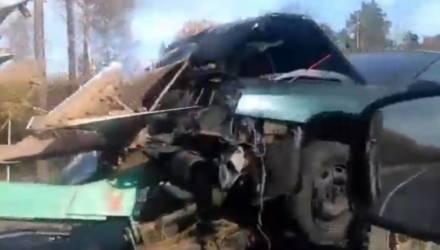 Страшное ДТП под Могилёвом: трактор плугом прошил автомобиль (видео)