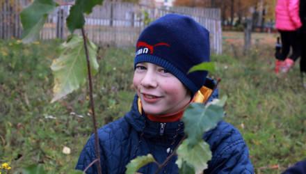 """ФОТОФАКТ: Более 2000 саженцев быстрорастущих деревьев посадили возле СЭЗ """"Могилёв"""""""