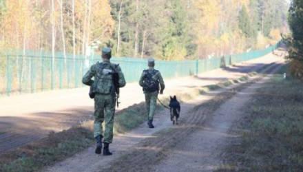 Стало известно, сколько террористов выявили на границе Беларуси