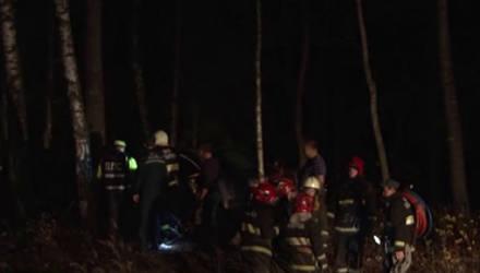 Очевидец о ДТП с лосем в Могилёвском районе: «Очень большая скорость была»