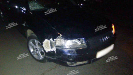 В Кричеве велосипедист и его пассажир погибли, столкнувшись с Audi
