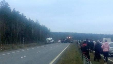 ЧП на трассе под Бобруйском: водитель фуры уснул за рулем