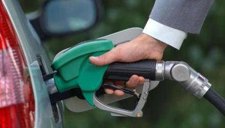 Беларусь в 2020 году прекратит выпуск биодизеля