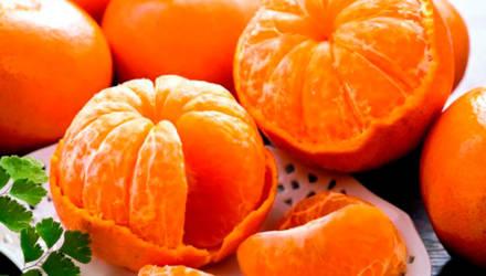 В Могилёве кто-то съел печёночный торт и мандарины – женщину отправили в гомельскую колонию на 4 года