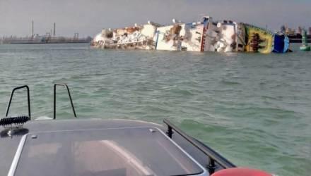 В Чёрном море опрокинулось румынское судно с 14 тысячами овец. На их спасение отправили полицейских, пожарных и флот