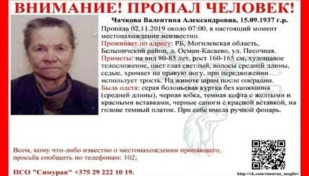 В Могилёвской области две недели ищут пропавшую 82-летнюю пенсионерку