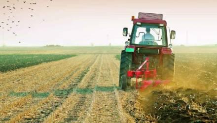 КГК выявил нарушения в организации полевых работ в Могилёвской области