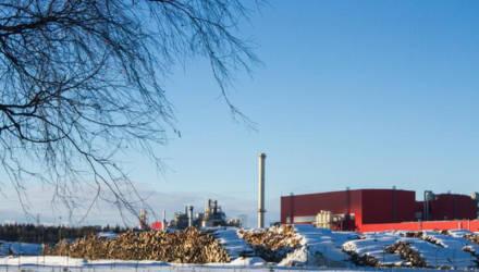 Под Могилёвом предприятие, которое беспокоит экологов, собирается увеличивать мощность