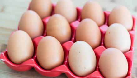 9 фактов про яйца, которые полезно знать каждому