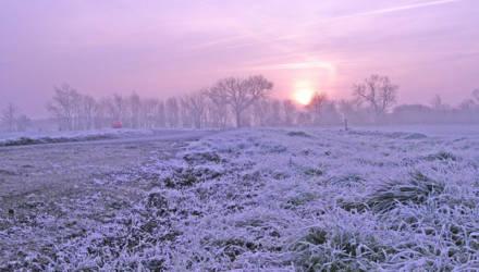 Синоптики прогнозируют «розовую зиму». Что это значит