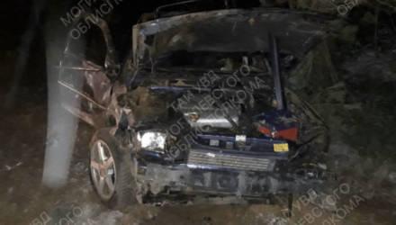 ДТП в Кировском районе: 18-летняя девушка на Opel объезжала косулю и вылетела в кювет