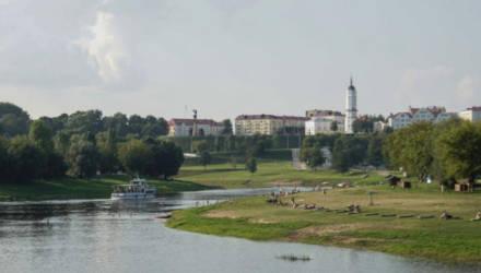 Городской пляж в Могилёве к следующему купальному сезону планируют обновить