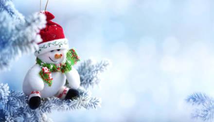 Всё же со снежком! Погода в Новый год и ближайшие дни в Могилёве