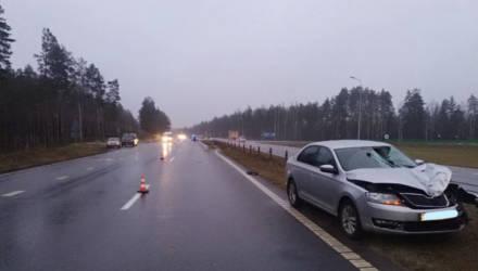 Бобручанин на трассе под Осиповичами сбил насмерть 65-летнюю женщину