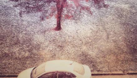 Могилёв в Instagram: топ-10 крутых снимков недели