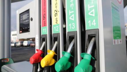 В Беларуси с 19 января снова дорожает автомобильное топливо