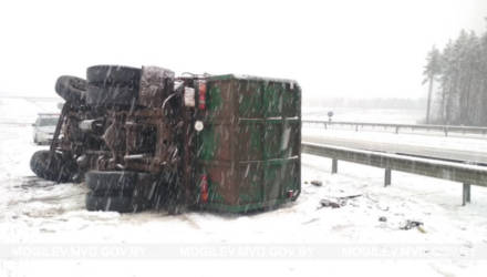 Грузовик опрокинулся в Бобруйском районе
