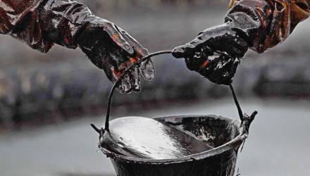 Беларусь отправила предложения о закупке нефти во все возможные страны