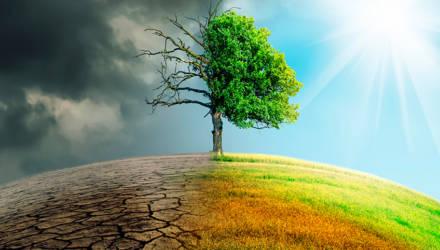 Как в 2019 году мир окончательно признал проблему изменения климата