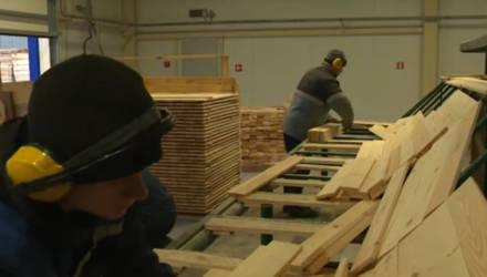 Краснопольский лесхоз работает на экспорт (видео)