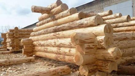 Житель Шкловского района пообещал могилевчанину изготовить сруб для бани и пропал с деньгами