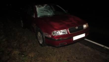 Смертельная авария произошла на трассе Осиповичи-Барановичи