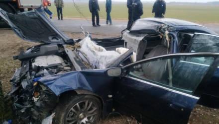 В Круглянском районе водитель Peugeot погиб после столкновения с трактором