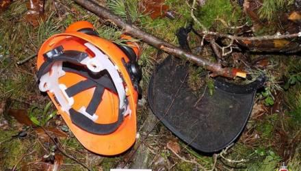В Бобруйском районе во время валки леса рабочий получил тяжелые травмы