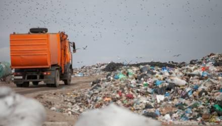 В Могилёвской области до 2021 года закроют мини-полигоны для мусора