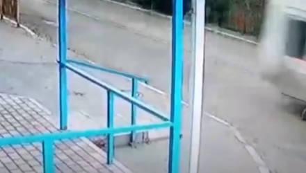 Девушка споткнулась и упала на дорогу, по которой несся автобус. Вот как ей удалось выжить