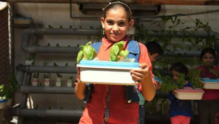 В пустыне в Иордании научились выращивать овощи в старых матрасах